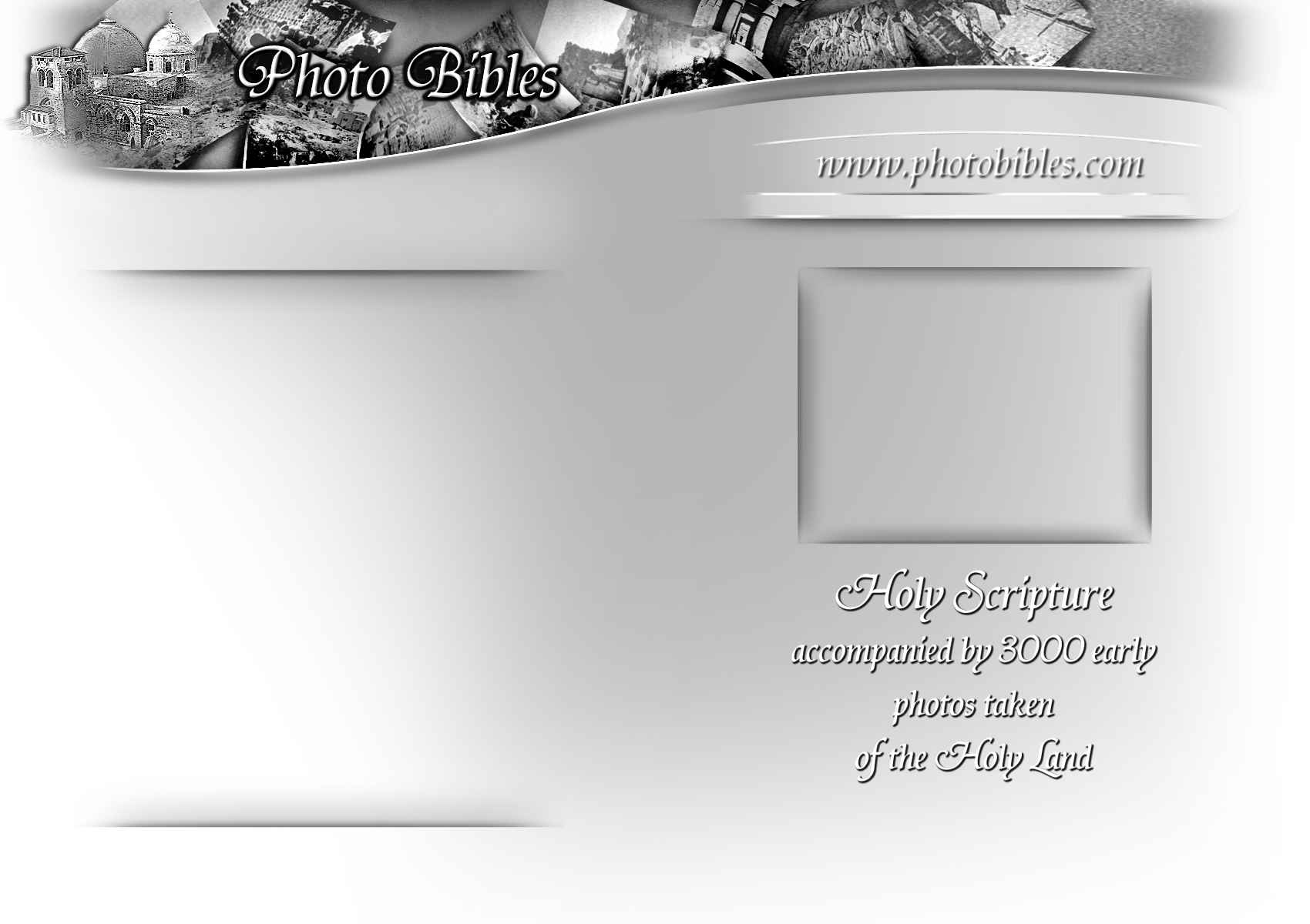 Holly Scripture background